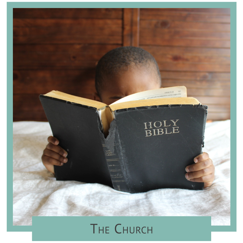 Home-Page-Get-Involved-The-Church.jpg