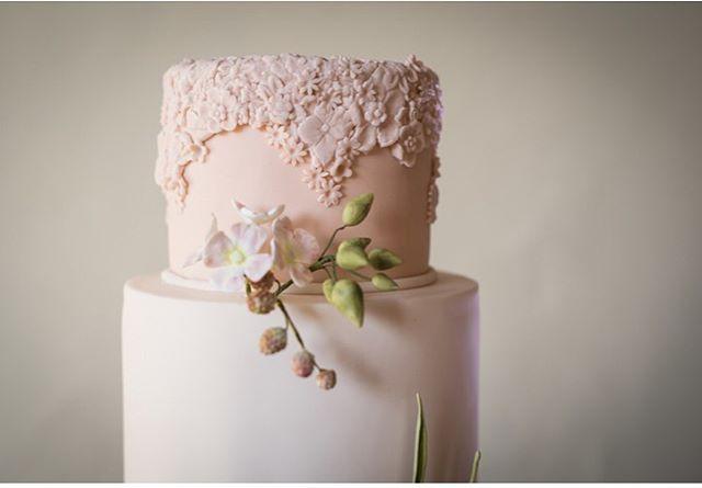 Stunning cake by @lisaadamscakes it took centre stage at our open evening last month ❤️ Photo @fjs.photography • • • #weddingbarn #barnwedding #barnweddings #weddingcake #localsuppliers #barns #rusticbarn #weddingsuppliers #weddingcake #weddings #cakes