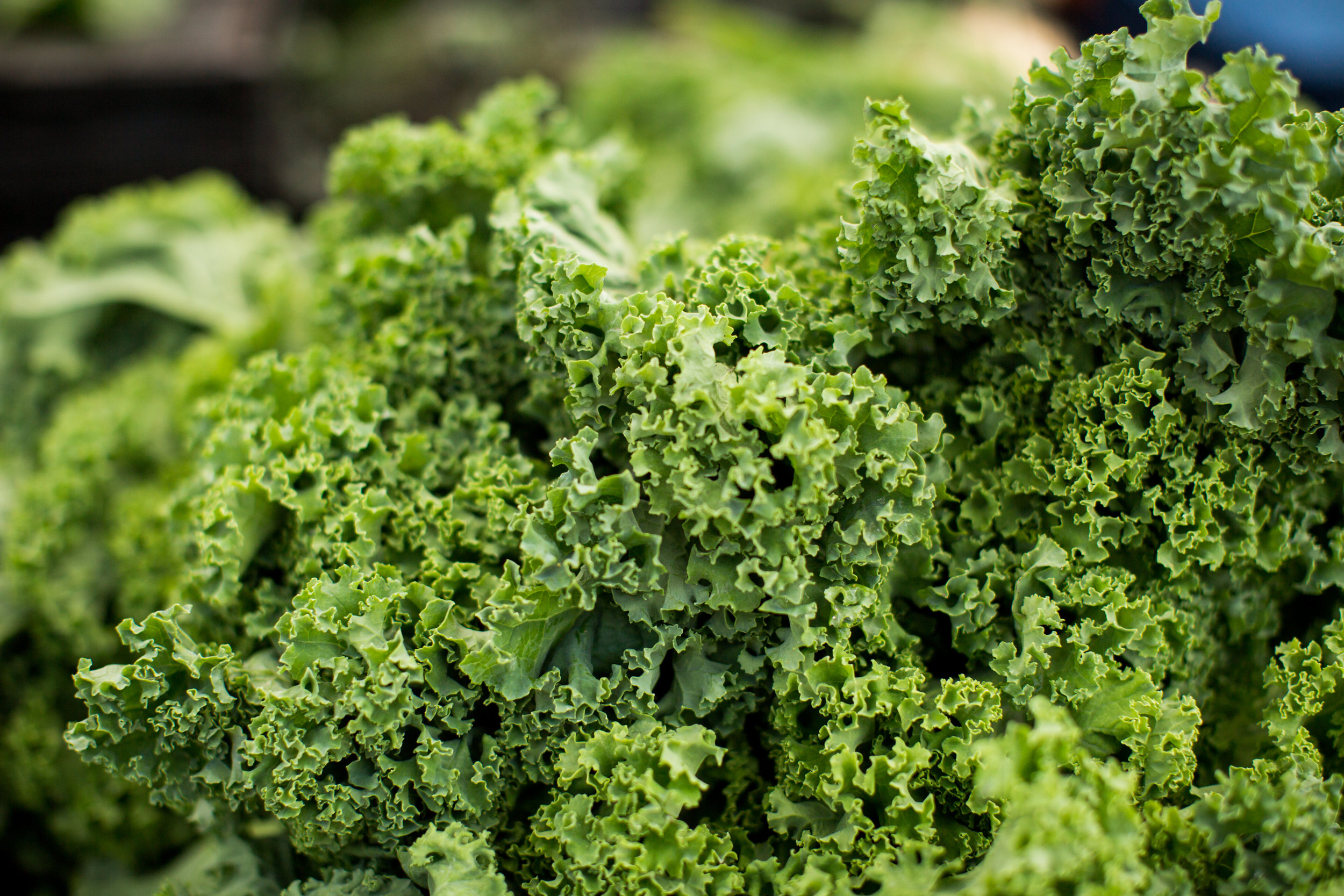 Kale - Kale is one of the most nutrient-dense foods that you can eat. It is especially rich in Vitamin A, Vitamin C, and Vitamin K. Kale is one of the best ways to get Vitamin K. One cup of rare kale containing almost 7 times the recommended daily amount. Kale also contains minerals that most people don't get enough of in their diet, including Calcium, Potassium, and Magnesium.