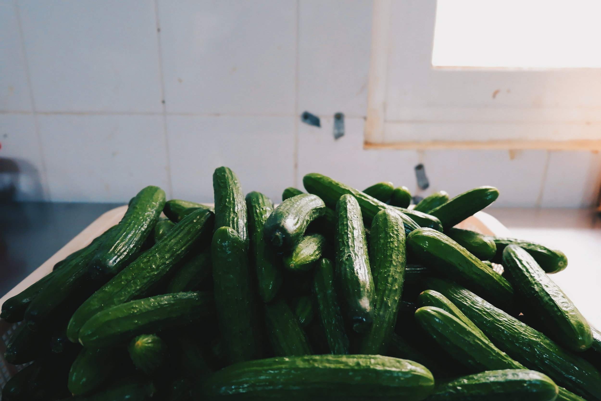 Zucchini - Zucchini is rich in Vitamin A, which may support eye health and the immune system. It is also high in antioxidants and fiber.