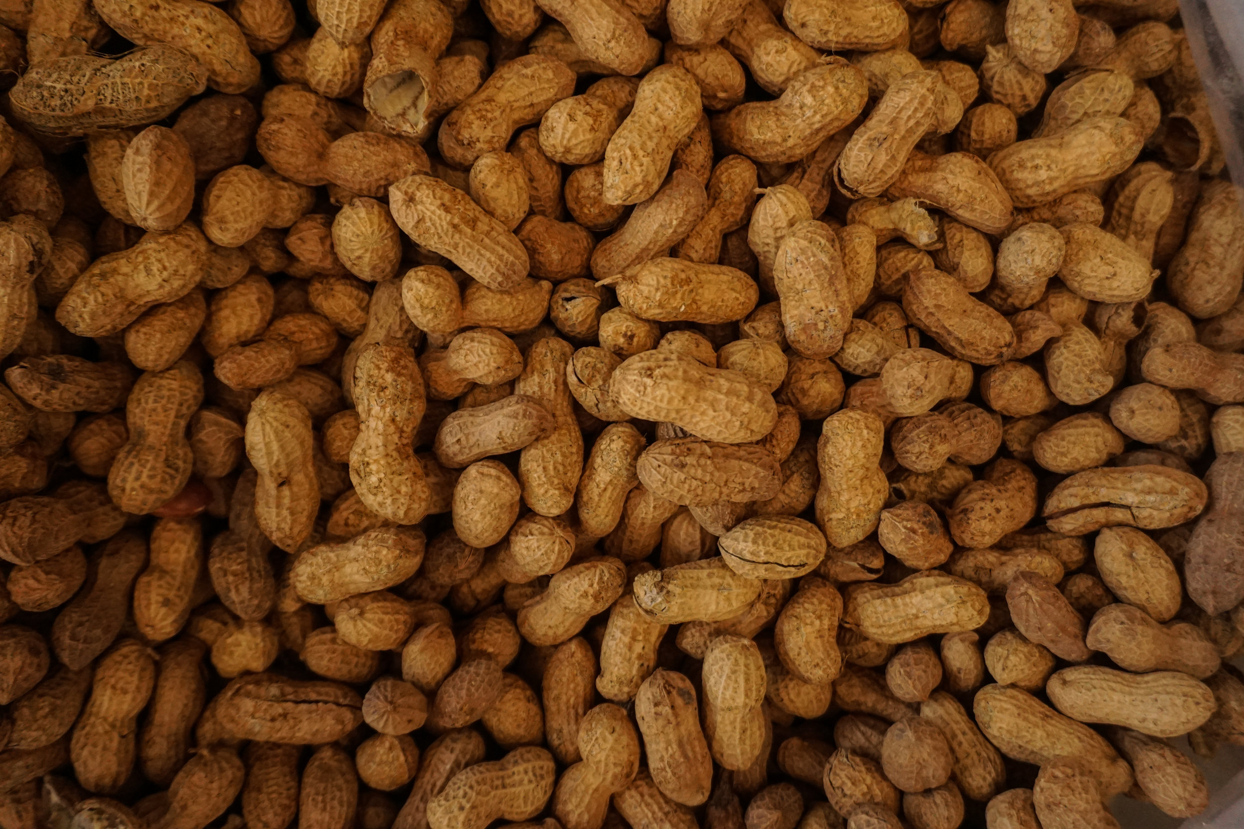Peanuts - Peanuts are a high quality protein with healthy fats. Peanuts are low in carbs and one of the best forms of dietary biotin. Biotin plays an important role in fat and sugar metabolism. Peanuts are also as rich in antioxidants as many fruits. The key is to eat the peanuts raw as a majority of the antioxidants are found in the peanut skin.