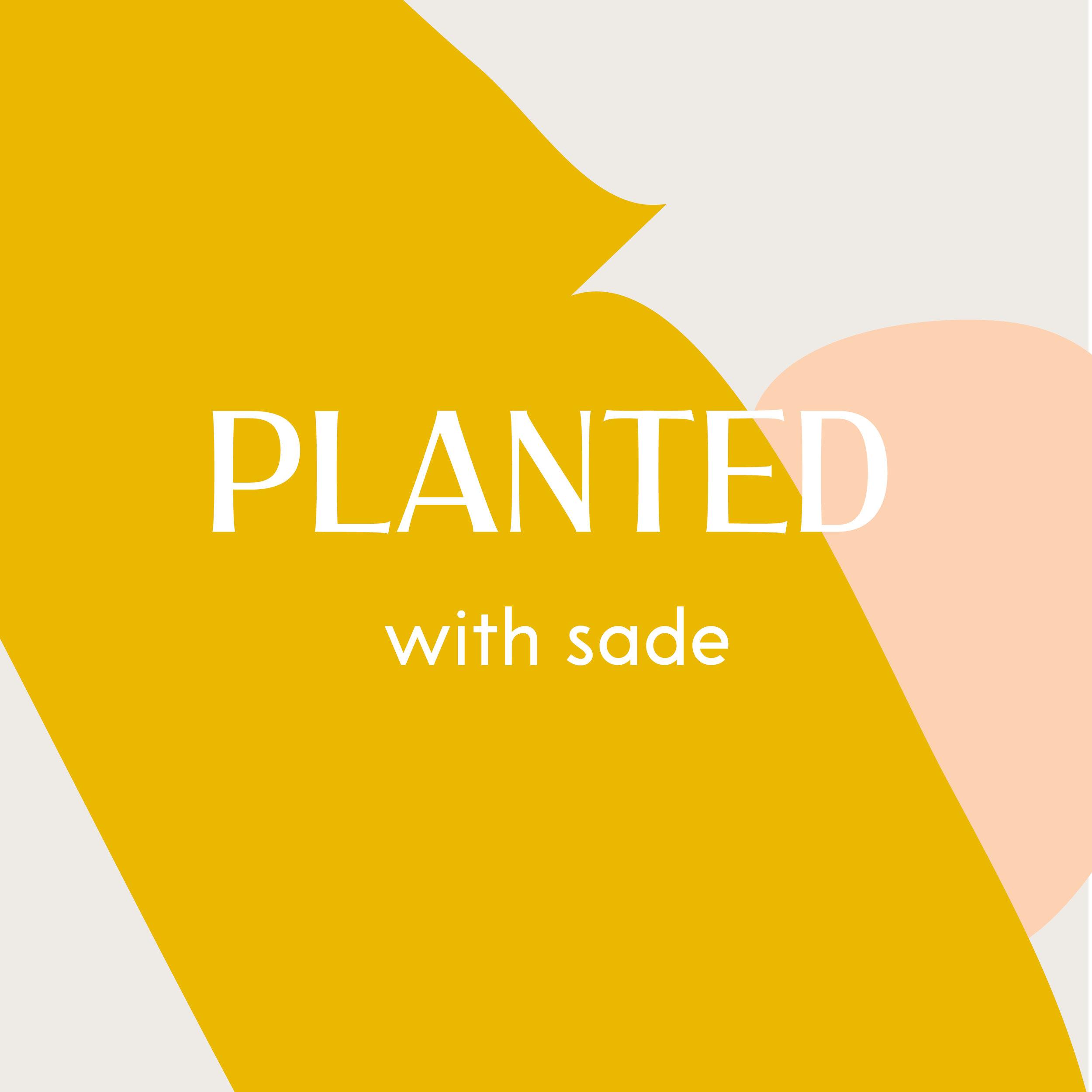 Planted Thumb.jpg