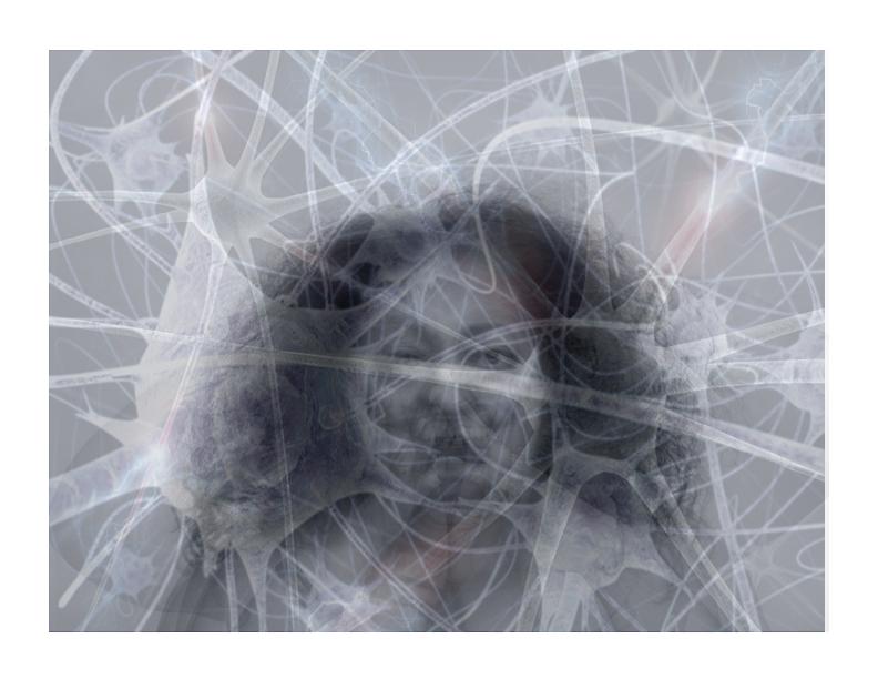 neuron self.jpg