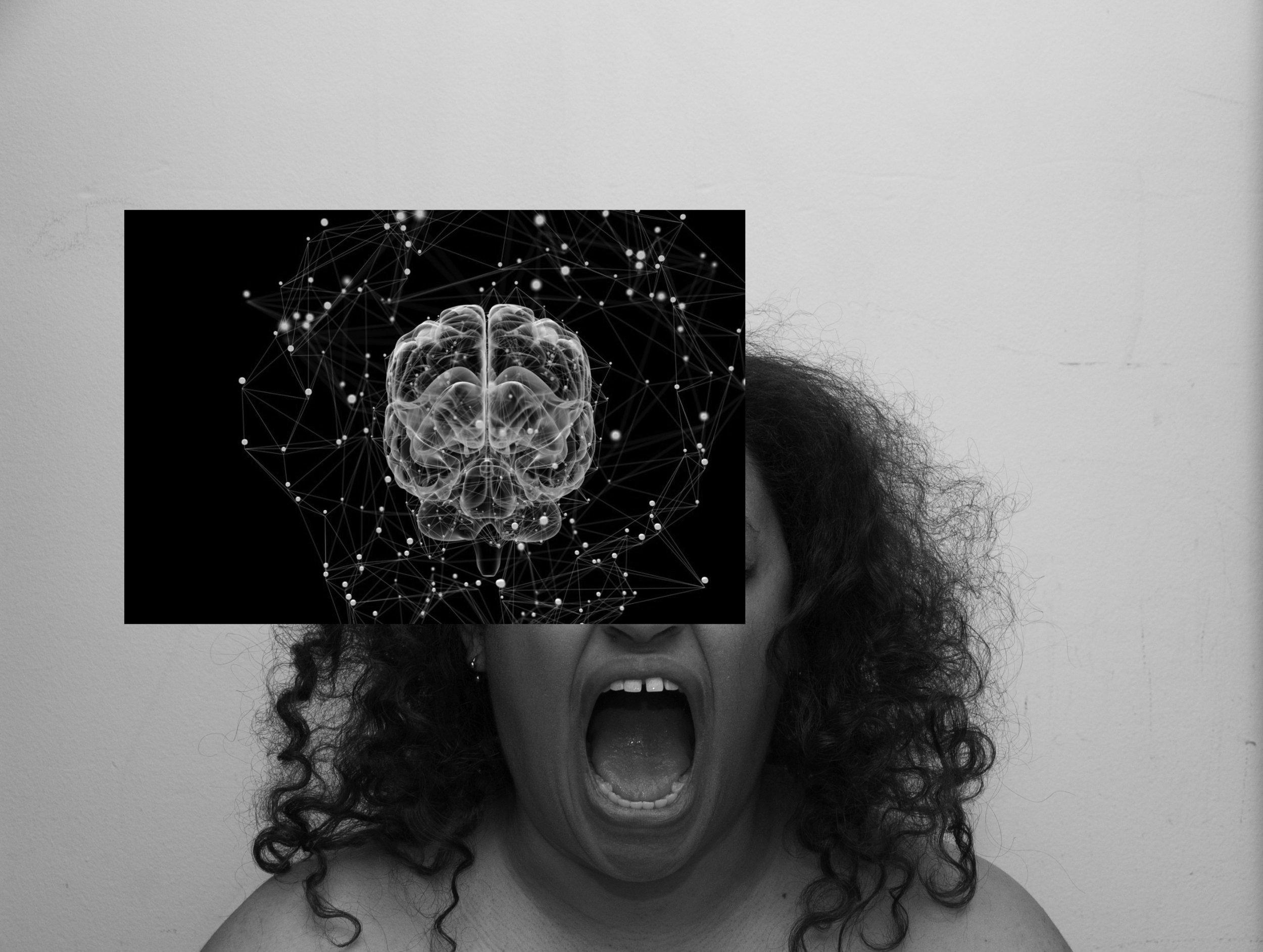 DSC_0139 brain.jpg
