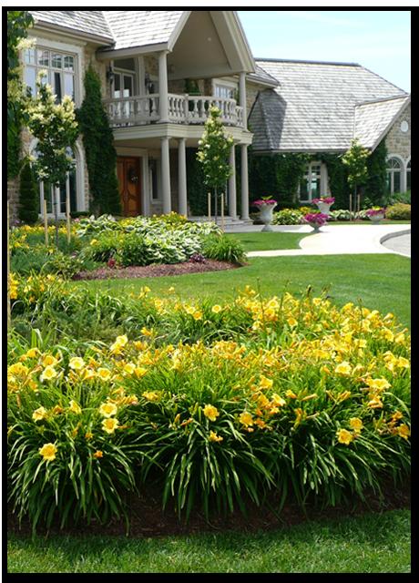 Summer Lawn Maintenance - May 1- October 31