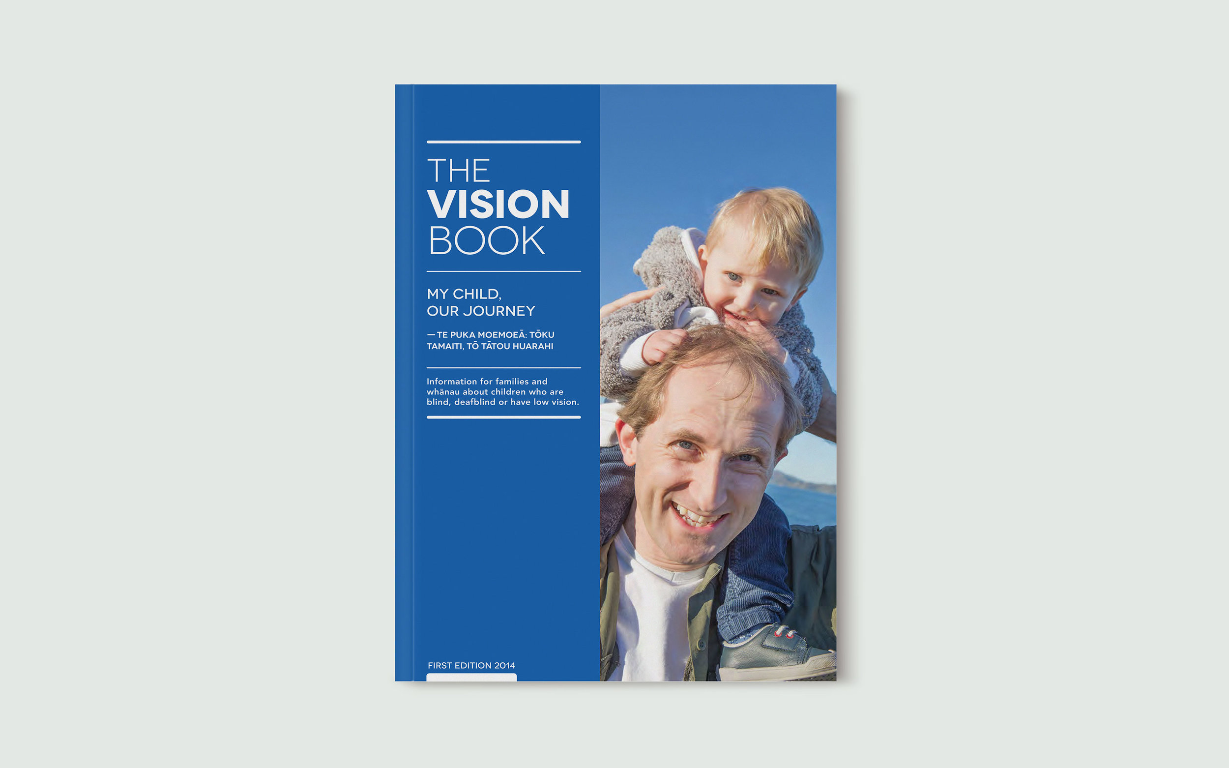 EDUCATION-The-Vision-Book-for-families-green-tint.jpg