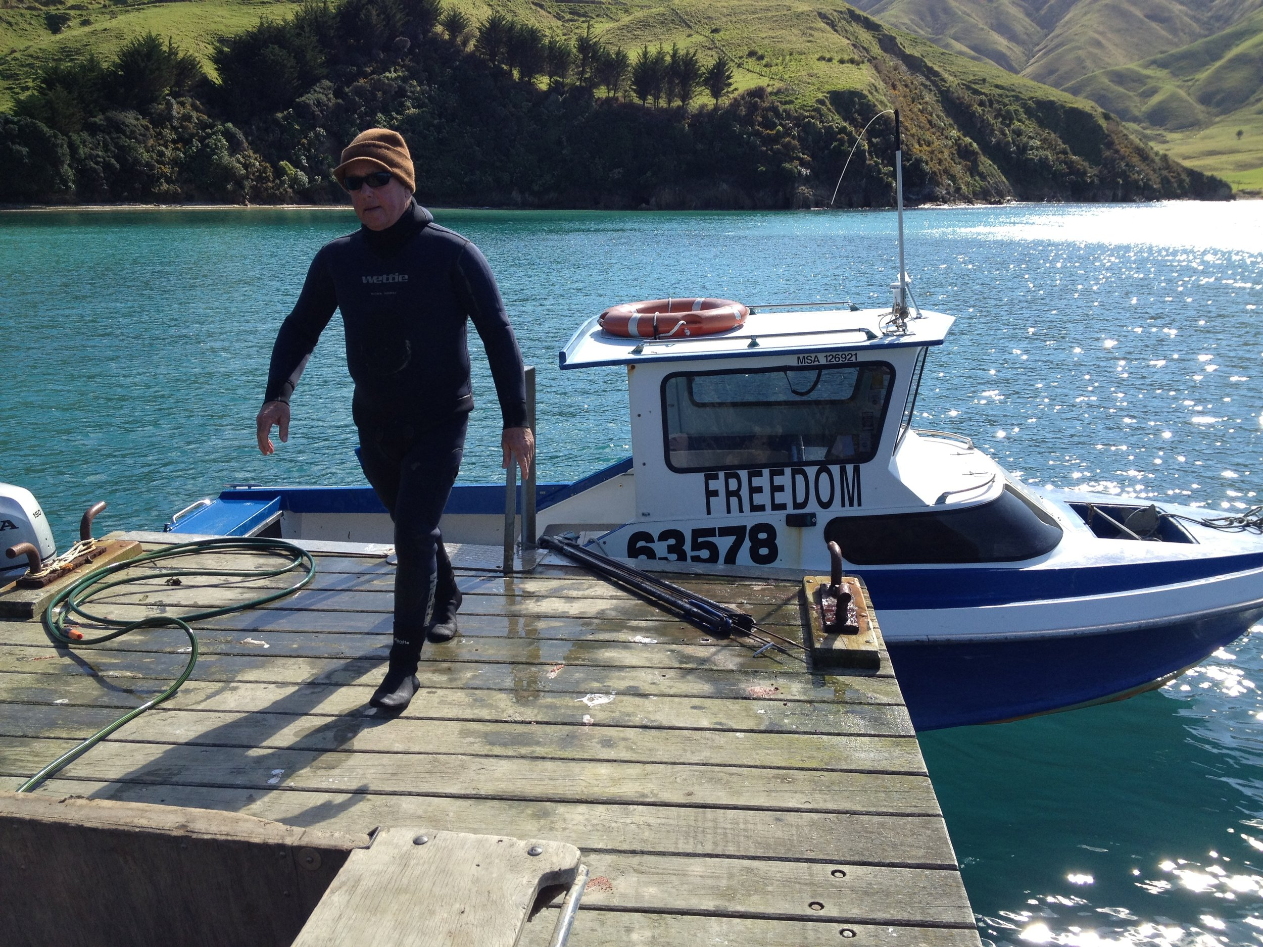 Mike Radon back from a dive, Whekenui Bay, Marlborough Sounds (image by Jacqui Gibson).