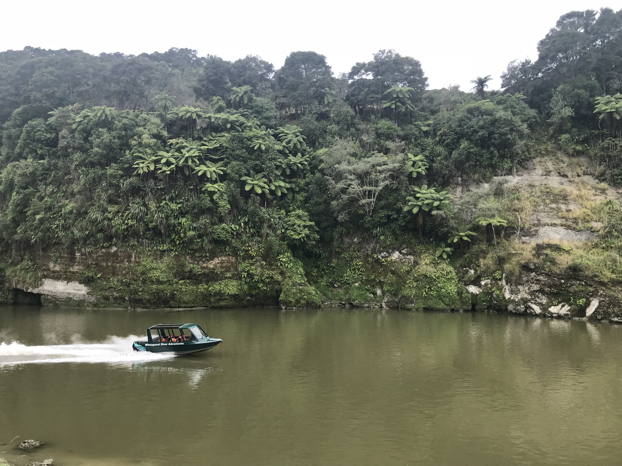 Jet boating on the Whanganui River, New Zealand (image by Jacqui Gibson).