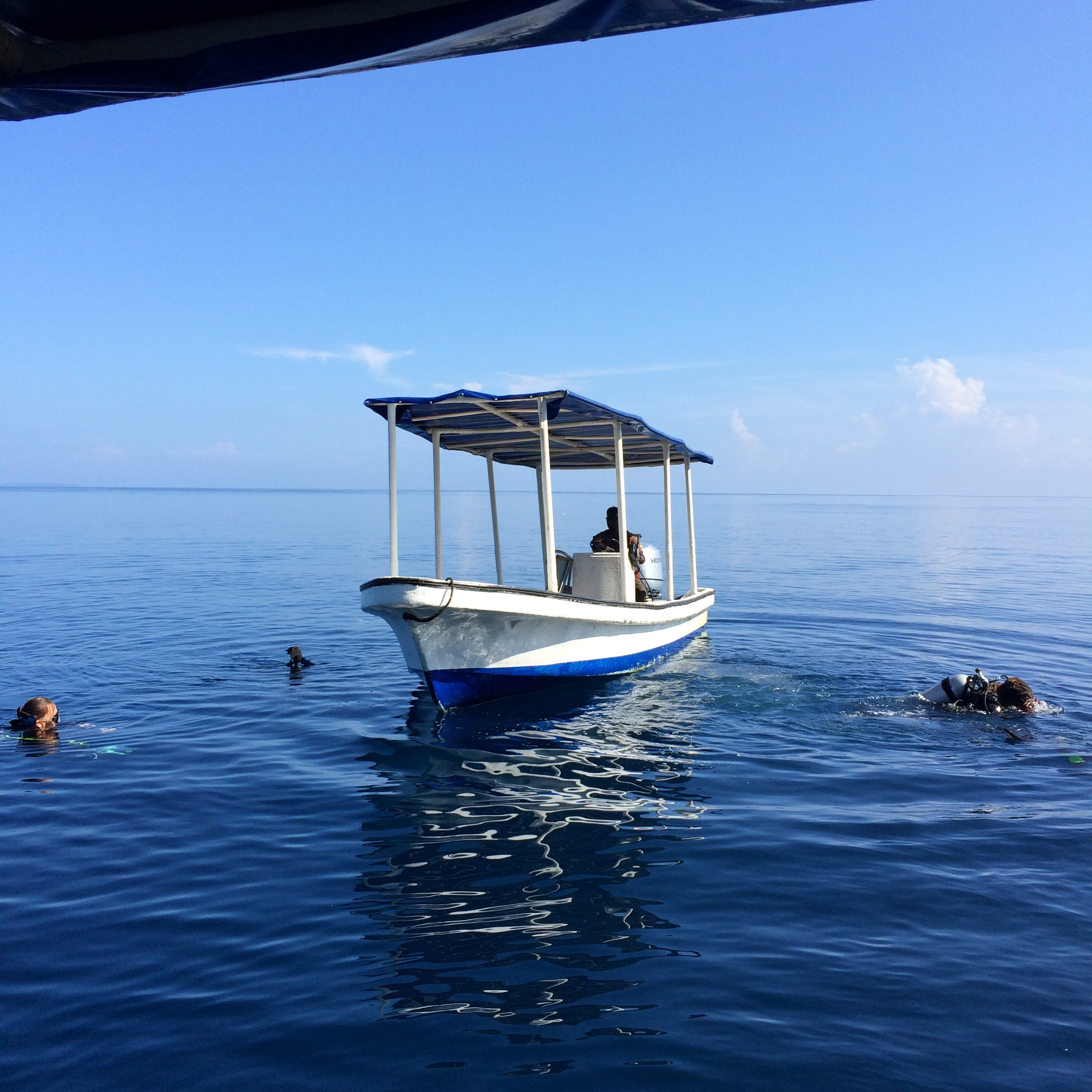 Diving at Uepi Resort, Western Province (image by Jacqui Gibson).