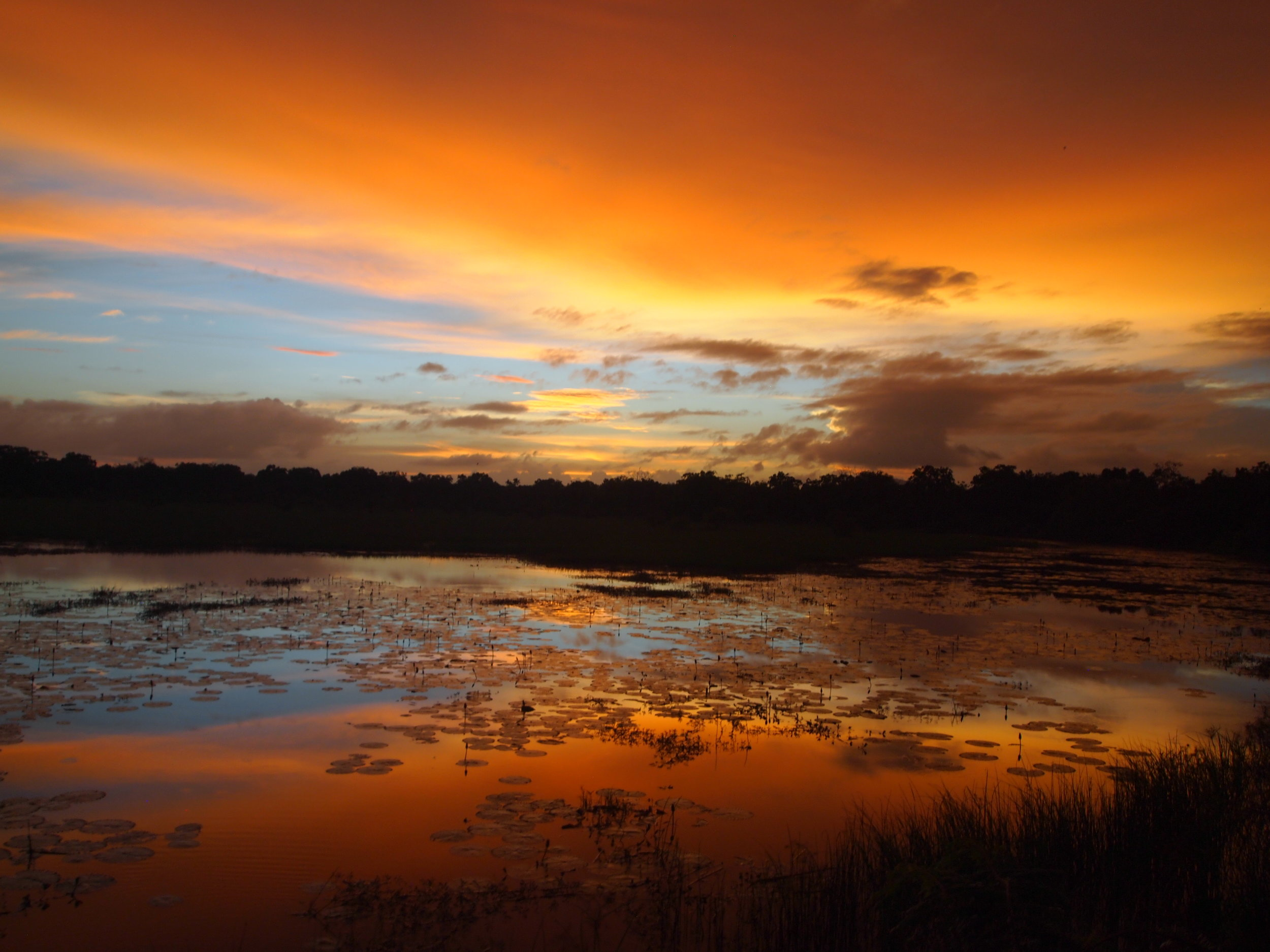 Sunset at Yala National Park, Sri Lanka (image by Jacqui Gibson).