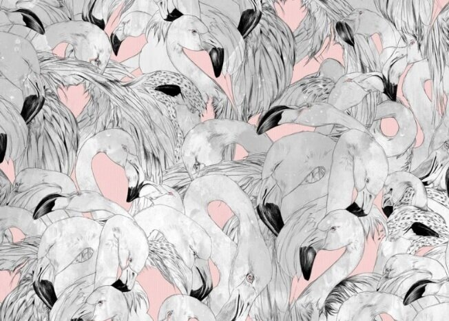 Flamingo - 'A fresh yet traditional interpretation of one of natures most inspiring birds', we love the sophisticated flamboyancy this wallpaper could add to any space.