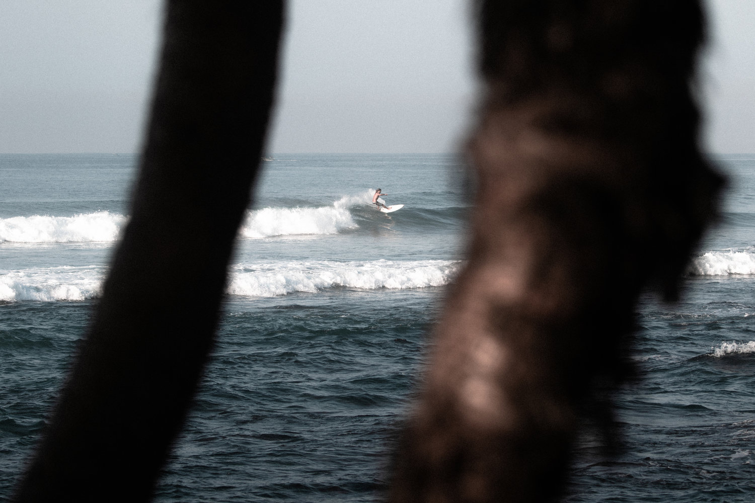 where to surf in weligama