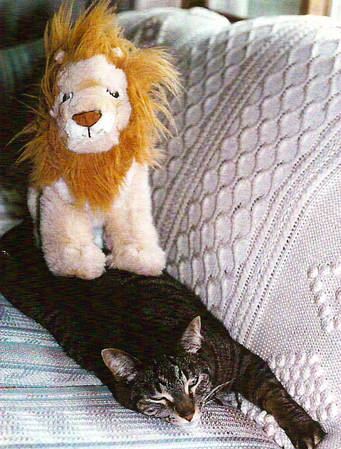 frankie-and-lion.jpg