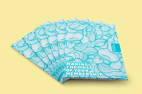 Pantone Printed Folder