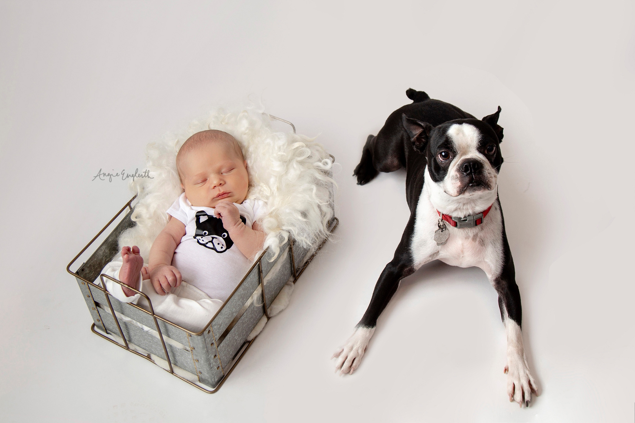 lancaster_newborn_photographer_angie_englerth_central_pa_028.jpg