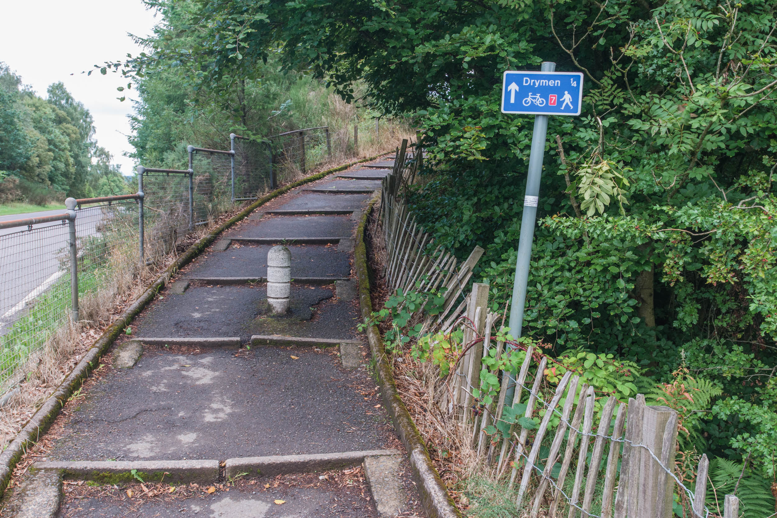 On the Number 7 Cycle Route