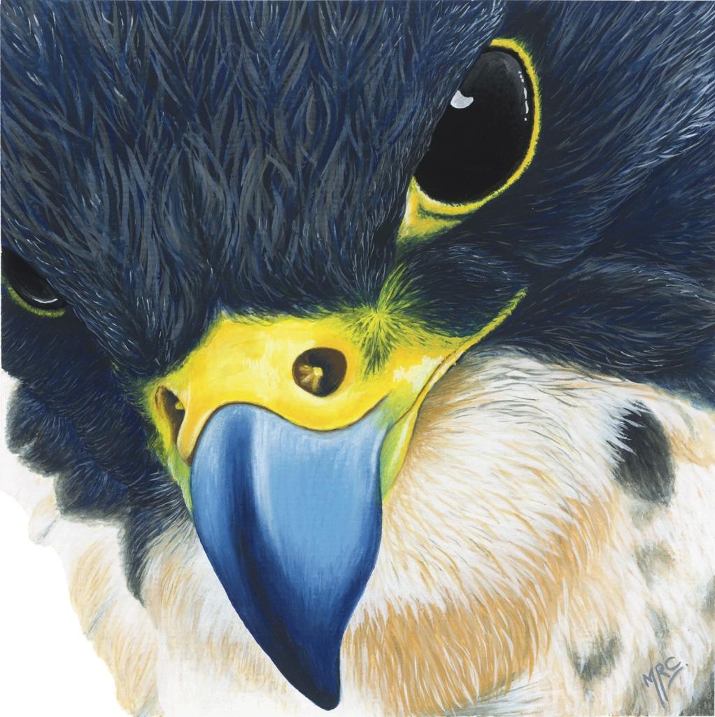 """""""The Hunter""""   Original Framed - £120  Image 15 x 15 cm  Signed Print £20"""