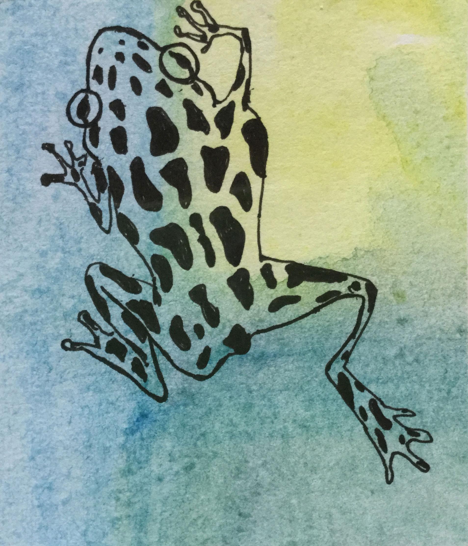 Frog-9-small.jpg