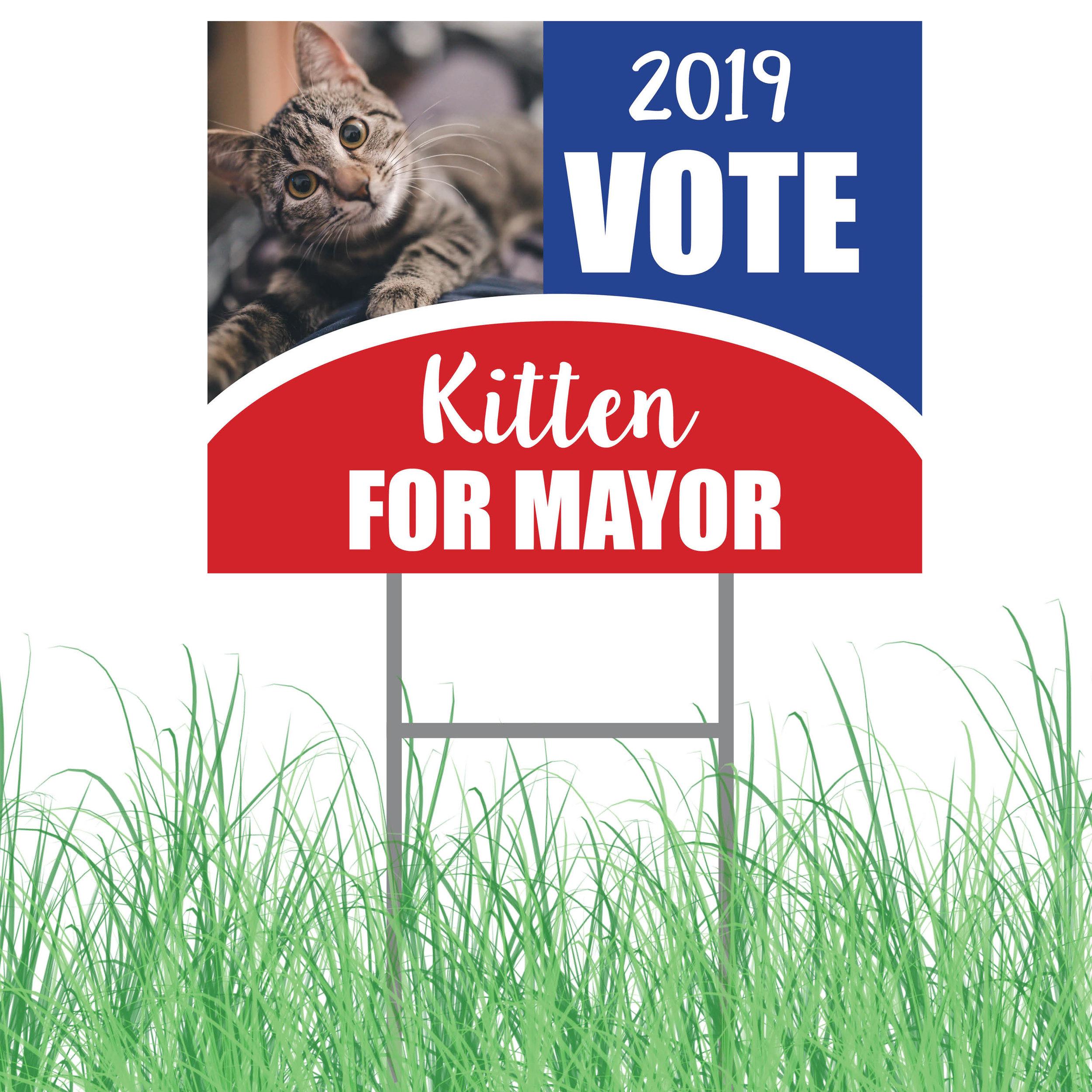 kitten mayor yard sign grass.jpg