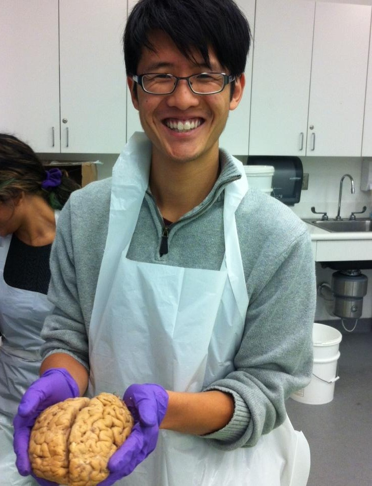 A portrait of the writer as a young scientist (holding a brain of the  Homo sapiens  variety).