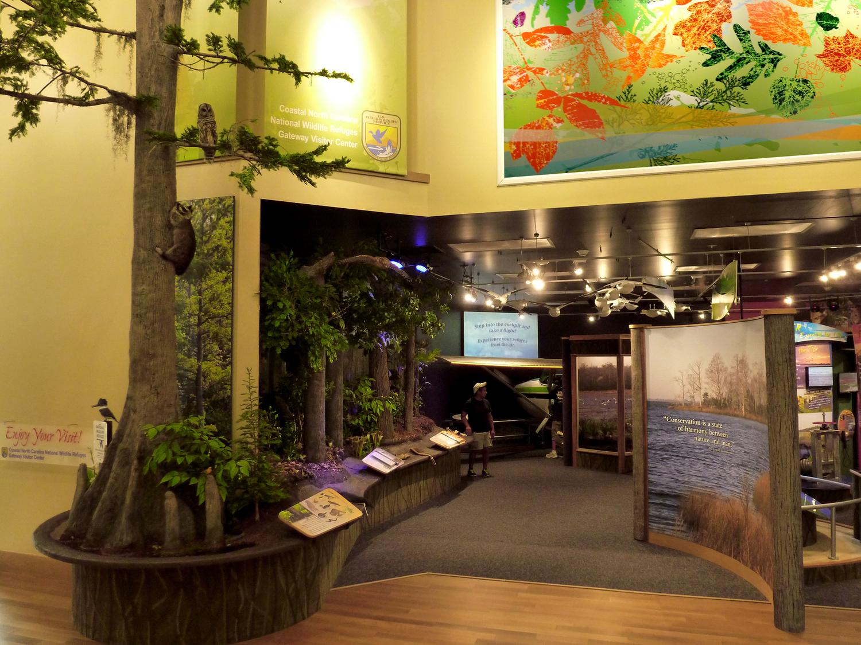 Coast+NC_03_Exhibit+Overview.jpg