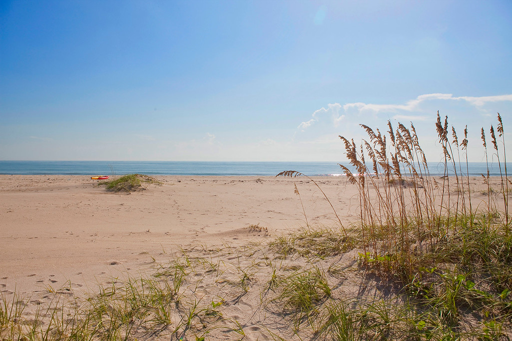 Beach Sector Report - enjoy one of florida's healthiest beaches
