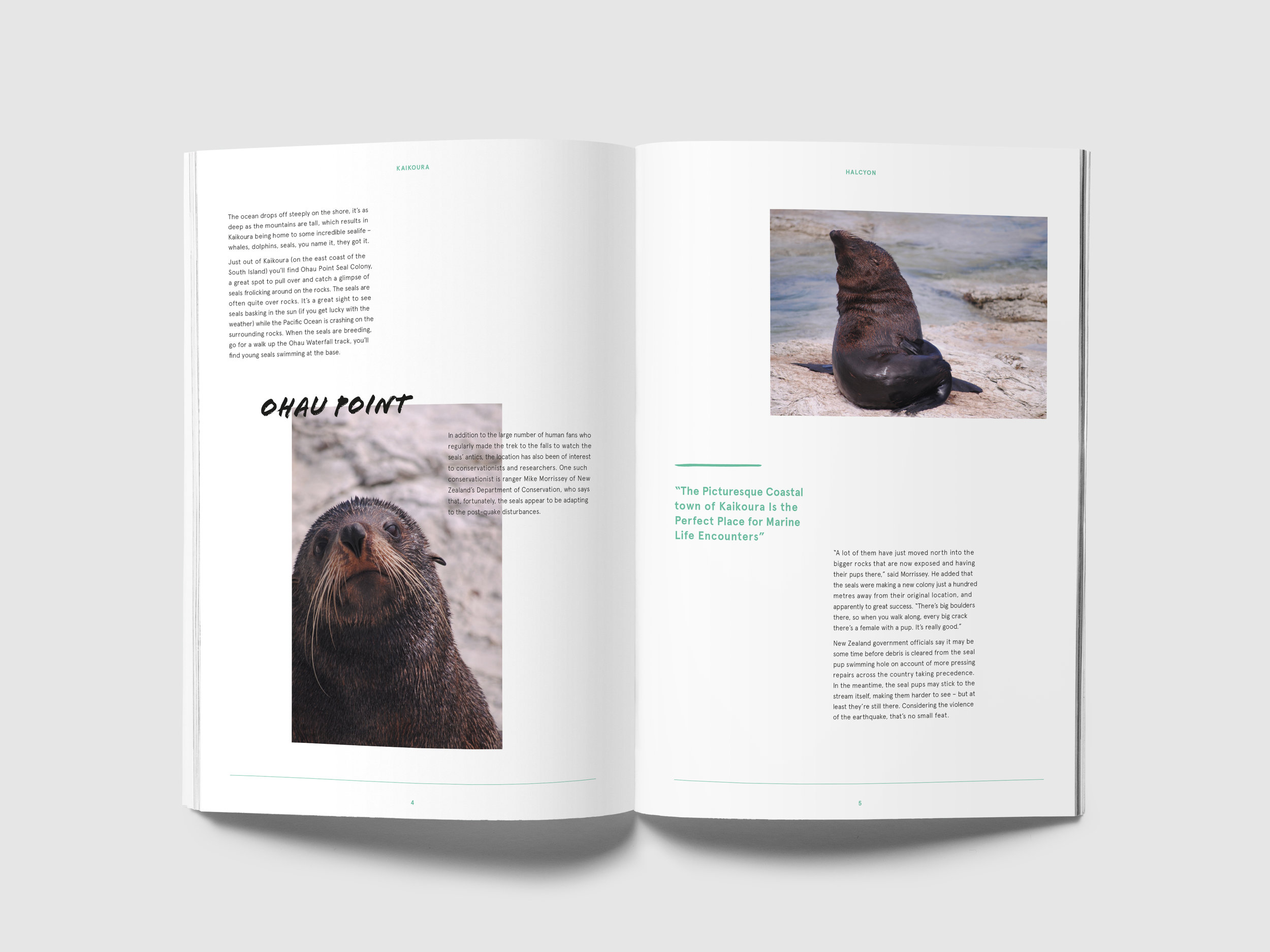 Halcyon-Magazine_Layout-Design_Inside-Pages_New-Zealand-2.jpg