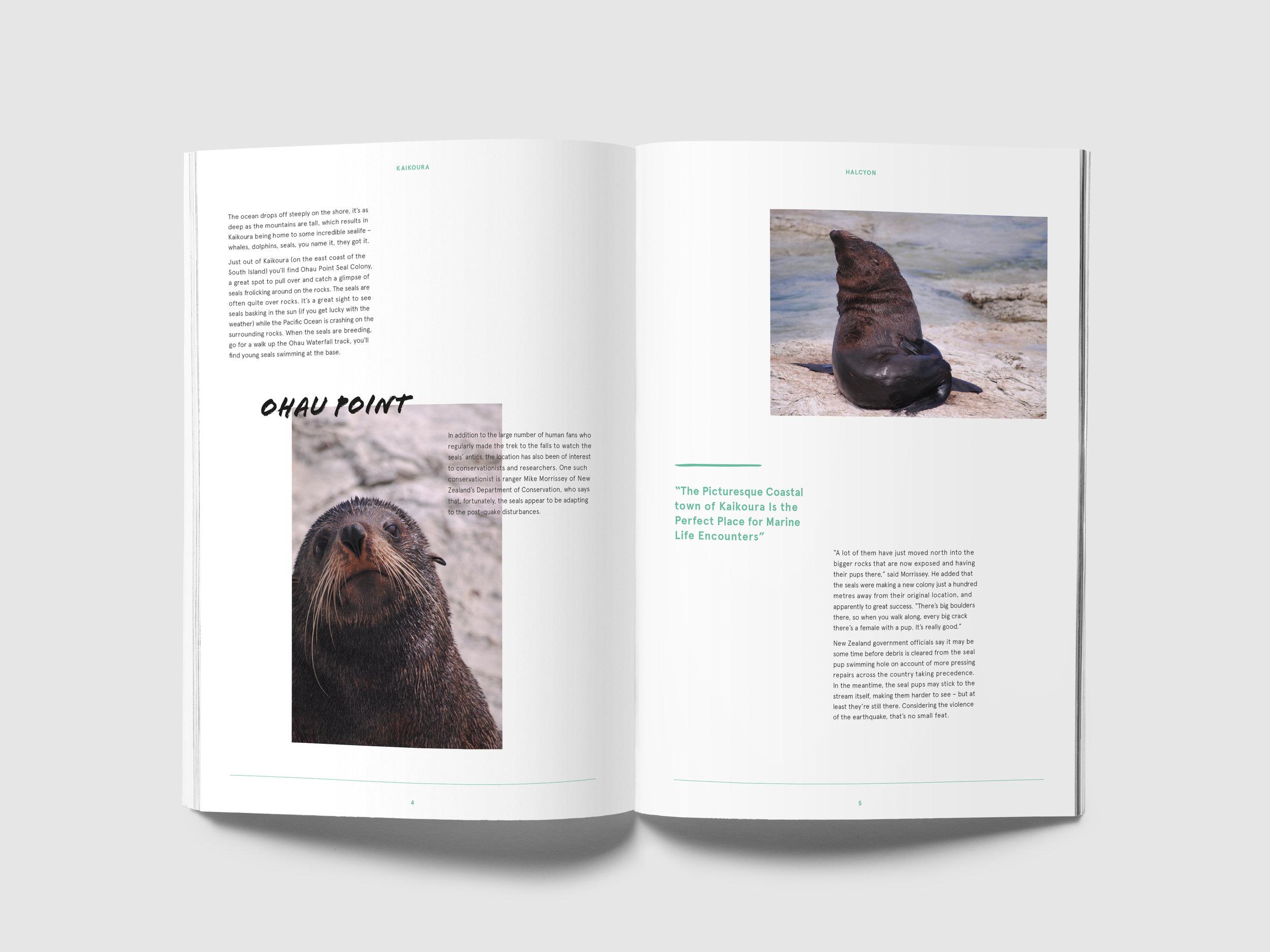 Halcyon_Magazine MockUp_Dev2_Inside Pages_2.jpg