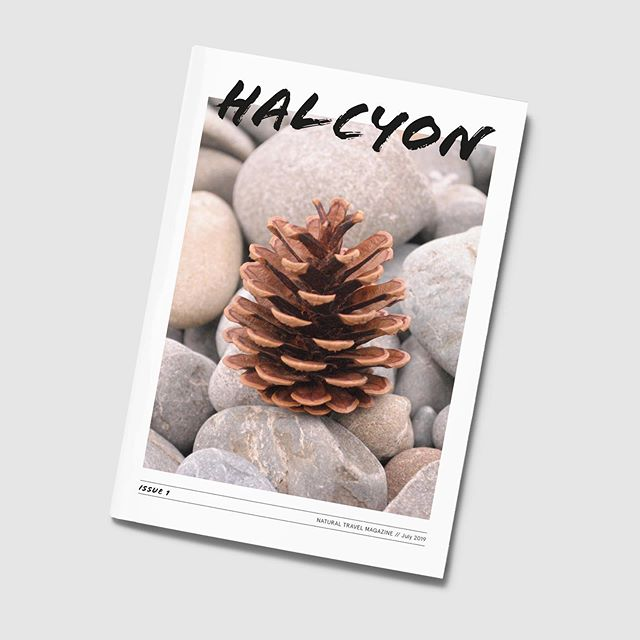 Magazine design based on the natural wonders of the world. For this issue I have hand picked natural phenomena from New Zealand, using photographs from my personal travels. Find more of this project on my website - link in bio.  #halcyon #magazine #cover #graphicdesign #editorial #print #nz #natural #wonderful #destinations #newzealand #photography #holidaysnaps #holibobs