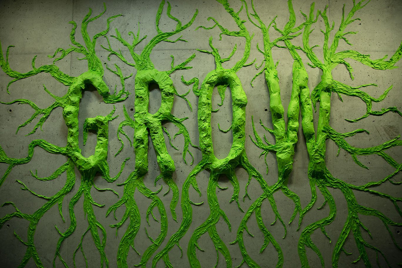 Grow Res150_MG_4819.jpg