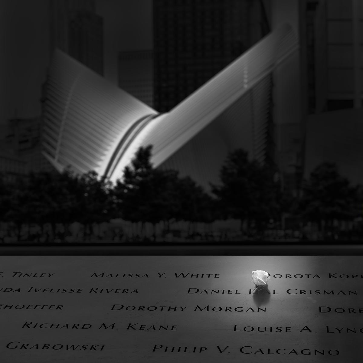 rememberance final.jpg