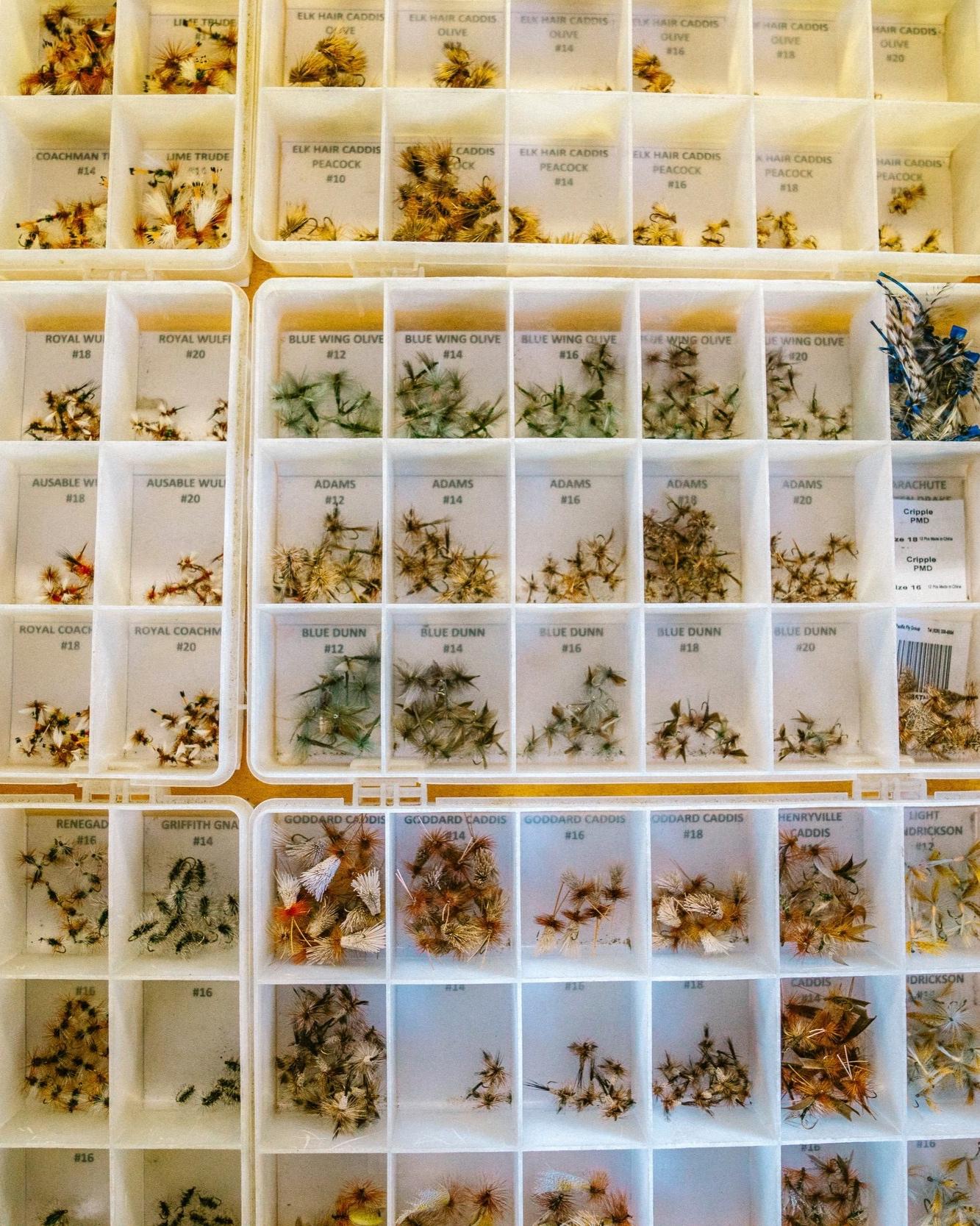 Herbal Medicine - Add a description of your services here. Cras mattis consectetur purus sit amet fermentum. Justo odio, dapibus ac facilisis. Cum sociis natoque penatibus et magnis dolor sit amet.