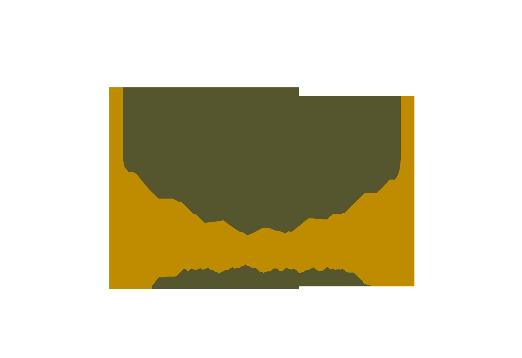 amalia-logo-edited_Size_Fixed.png