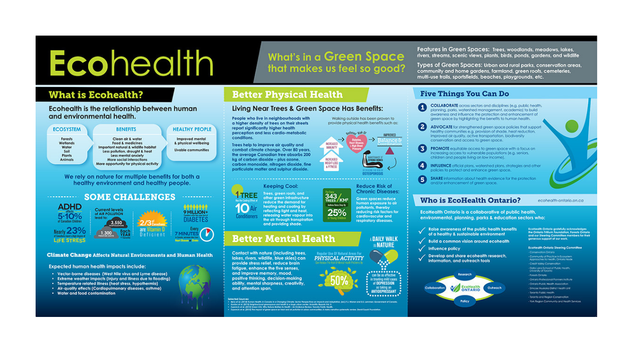 Ecohealth - generic.png