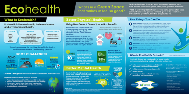 Ecohealth - generic2.png