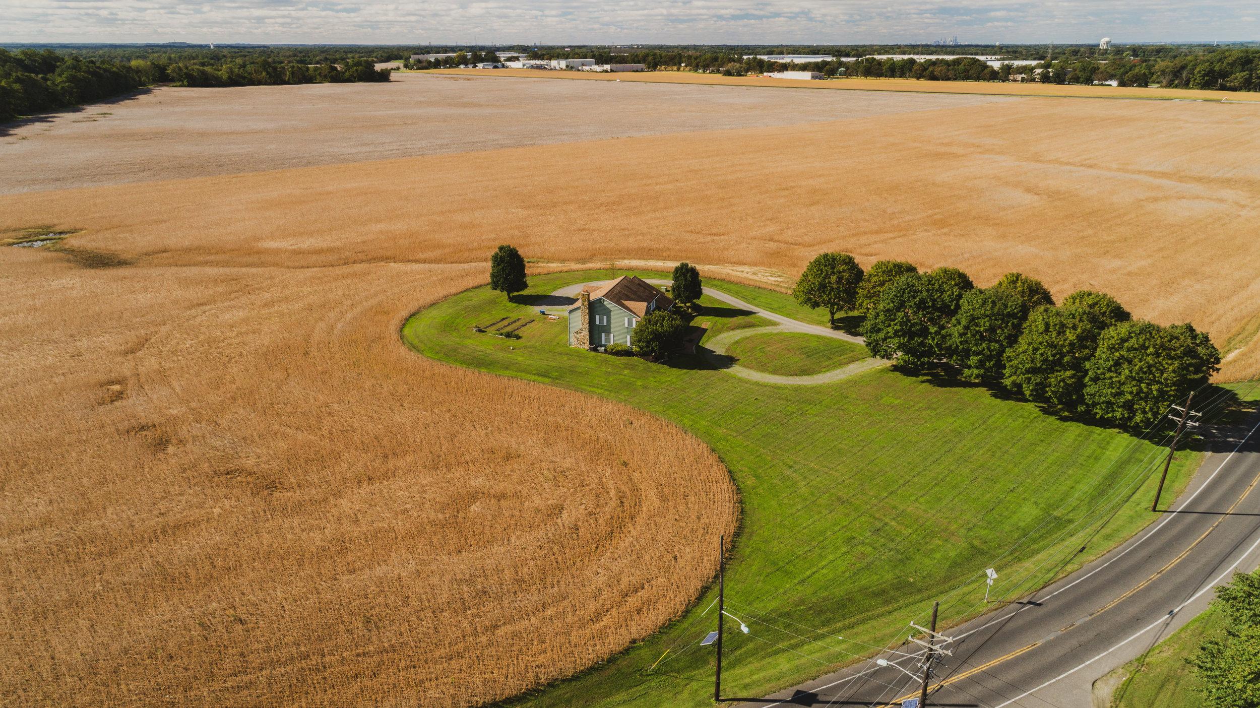Sunny Side Farms-2.jpg