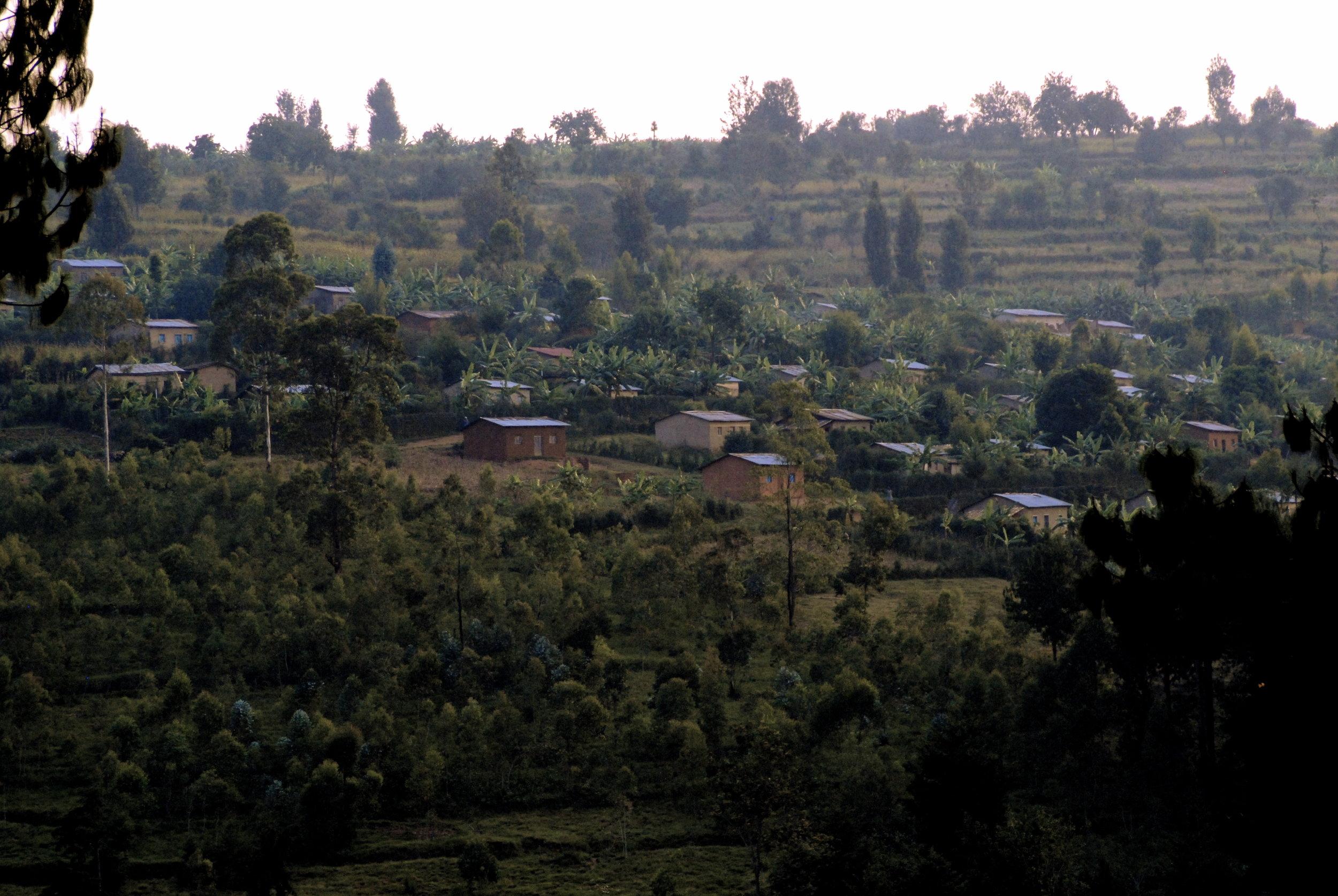 Burundi hillside.JPG