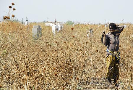 Graveyard, machete and a woman working