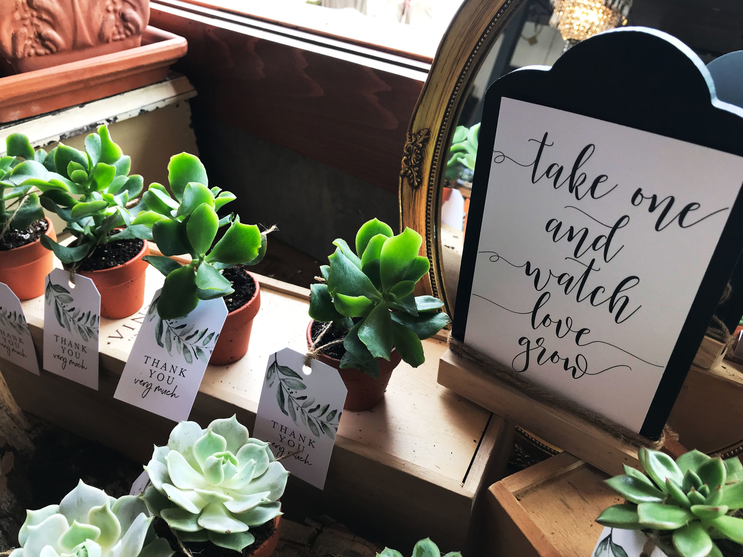 diana-andres-wedding-favours-succulent-plants-greenery-thank-you-tags.jpg