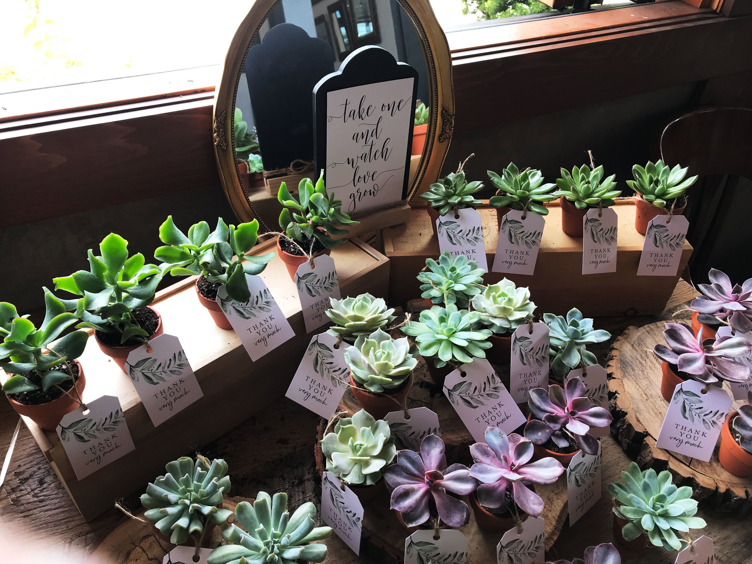 diana-andres-wedding-favours-table-succulent-plants-greenery-thank-you-tags-tablescape.jpg
