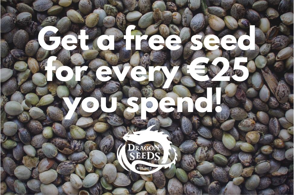 Free seeds.jpg