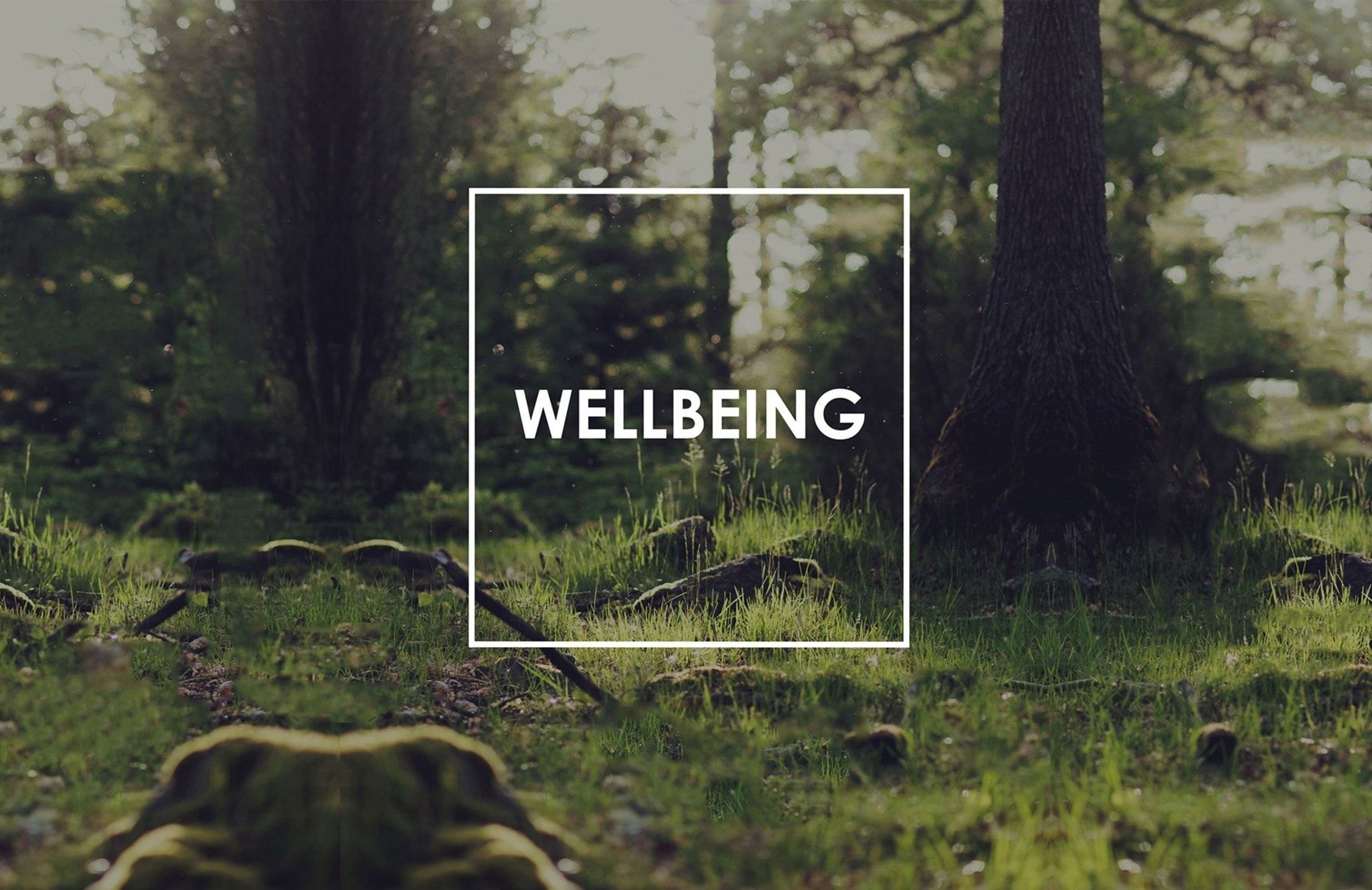 wellbeing-banner-min.jpg