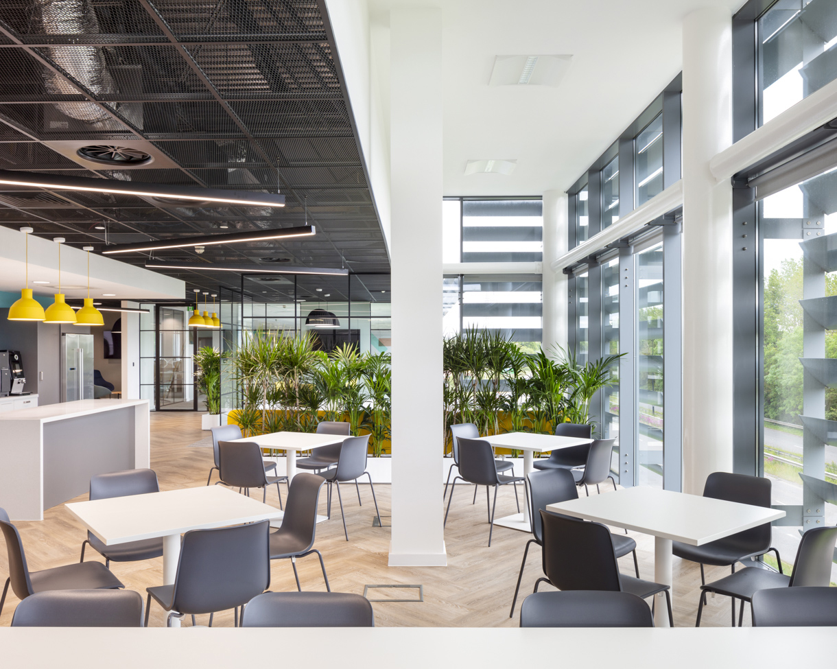 THE DESIGN SCHEME. - AWW designed the scheme with the aim of maximising daylight and creating a biophilic atmosphere by introducing a large number of green plants in the new office space, whilst enhancing the panoramic views of the surrounding countryside.