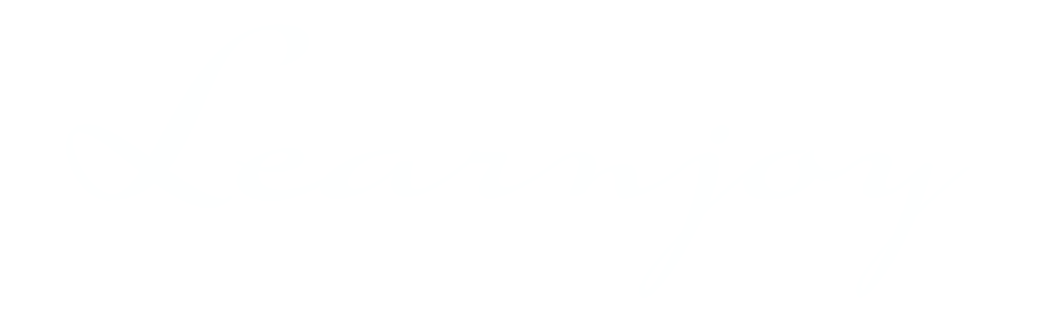 Learnjoy logo transparent.png