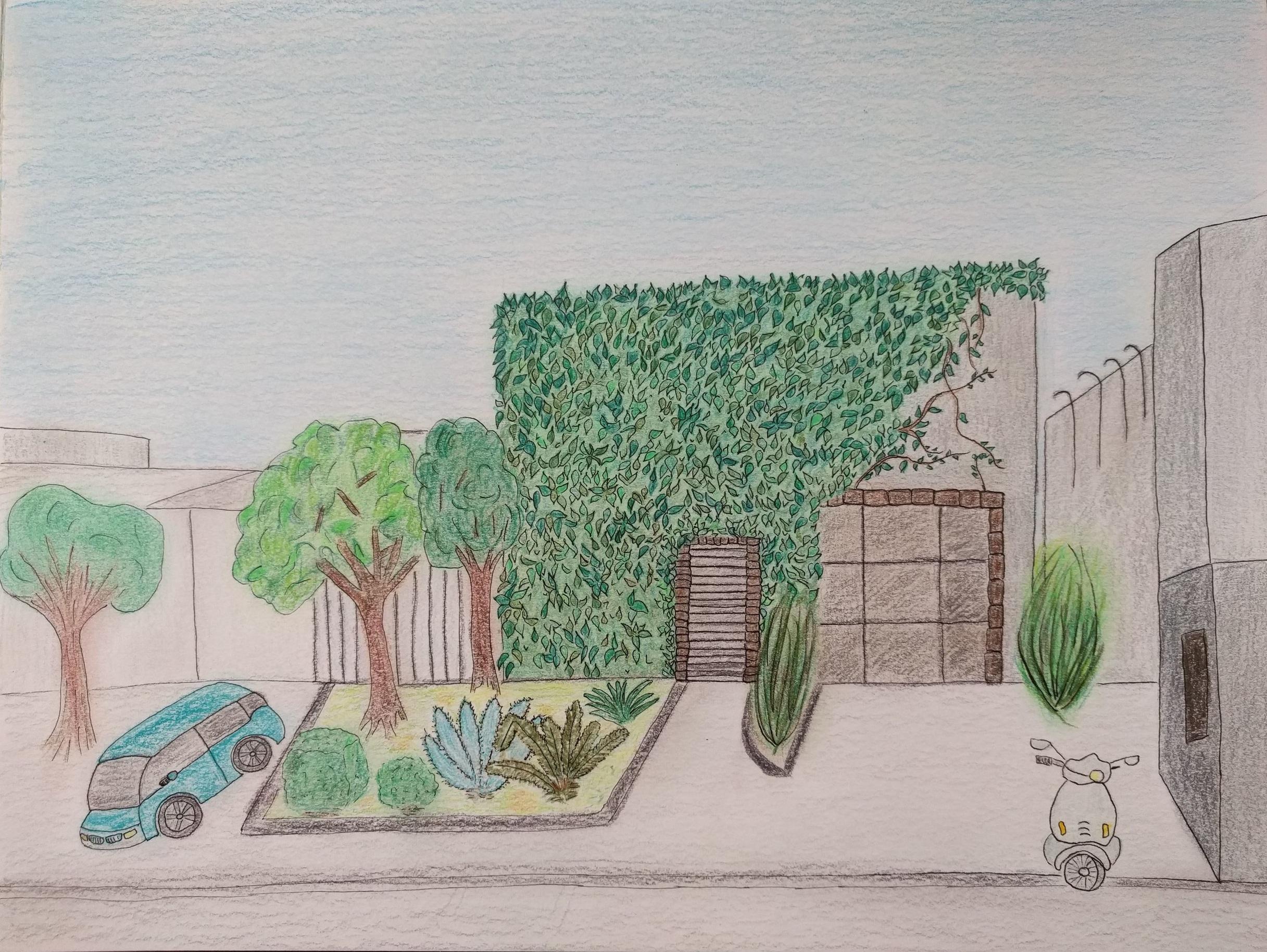 Urban Series. Culver City Vines