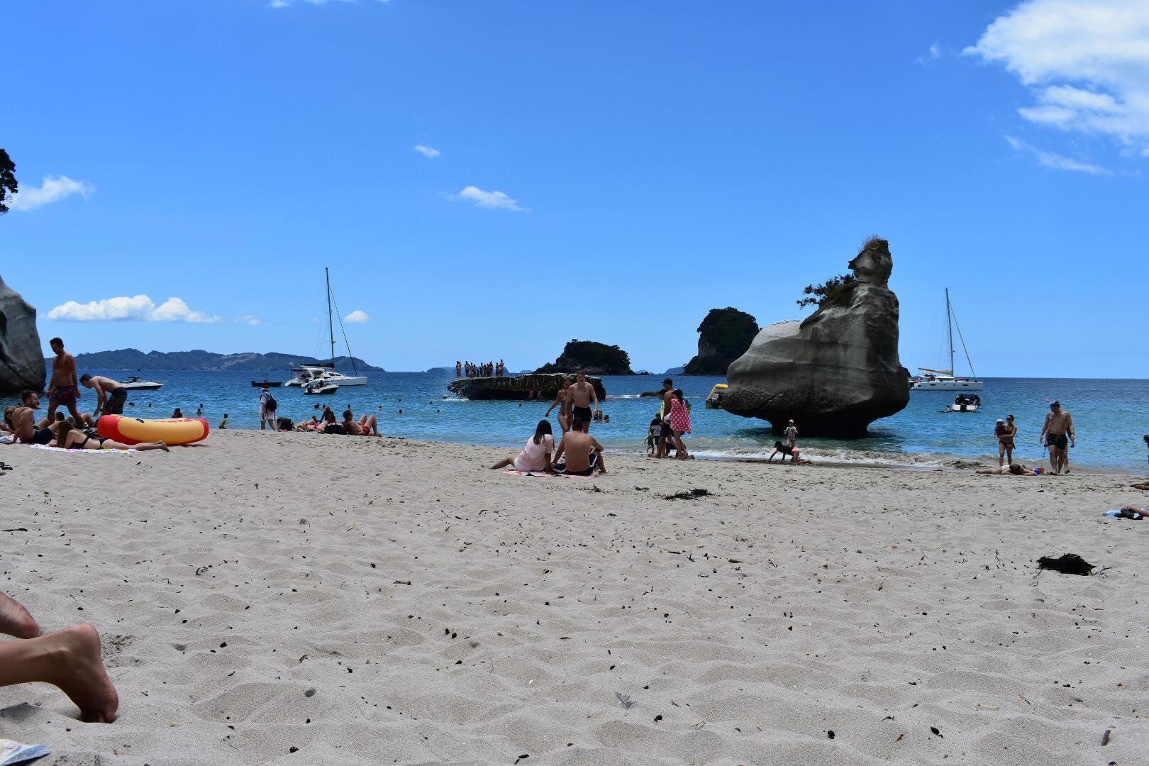 Cath Cove people.jpg