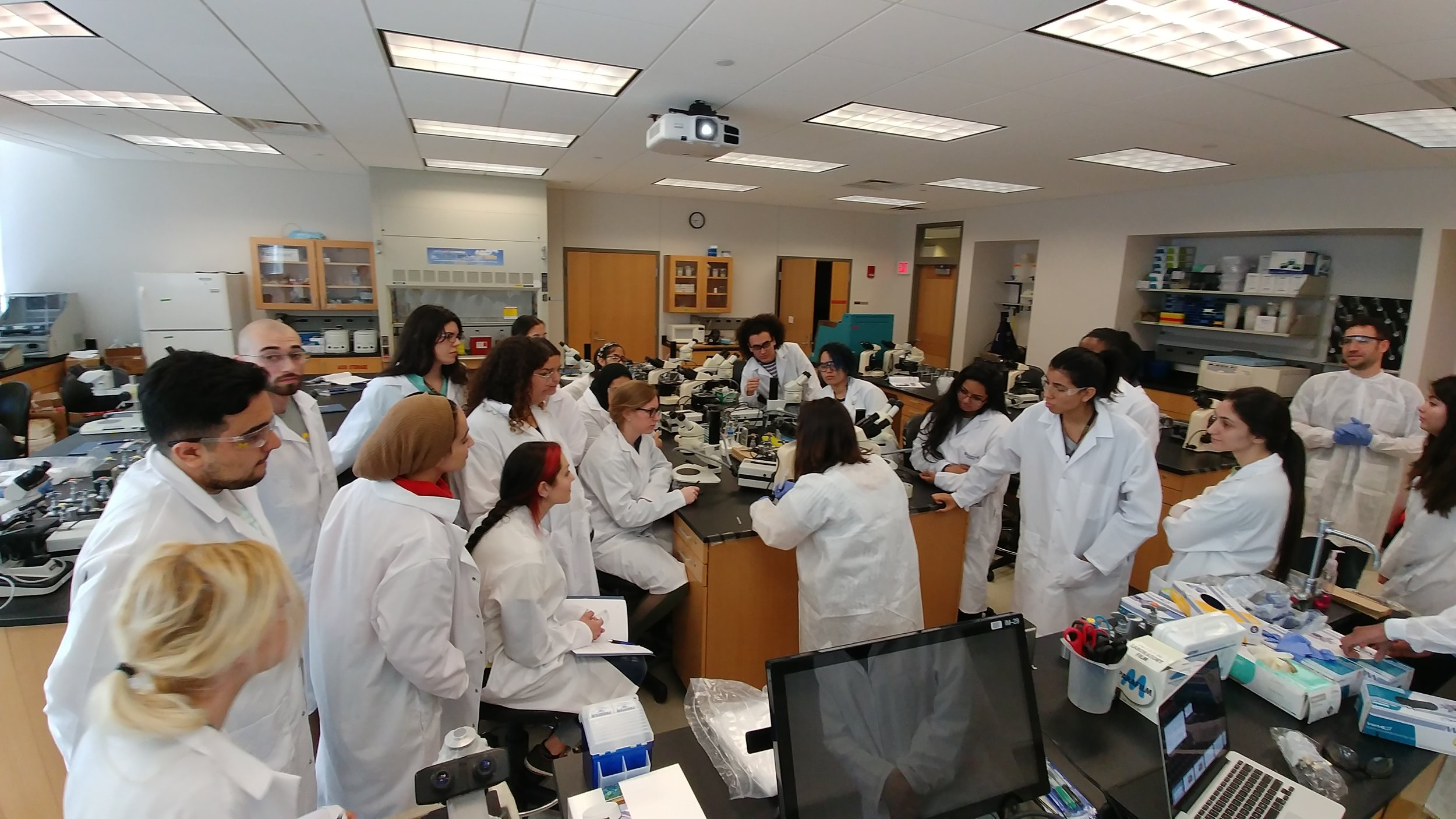 Hands-On Labs - Expand your laboratory research skills in a fully-functional developmental biology laboratory. Gain an in-depth understanding of the cutting-edge techniques and model organisms used in modern research labs.
