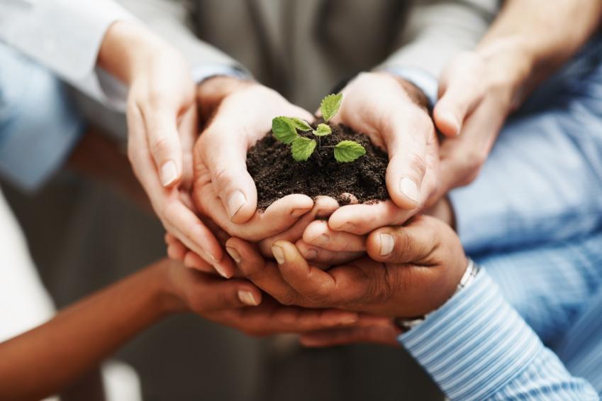 hands-holding-seedling-849x565.jpg