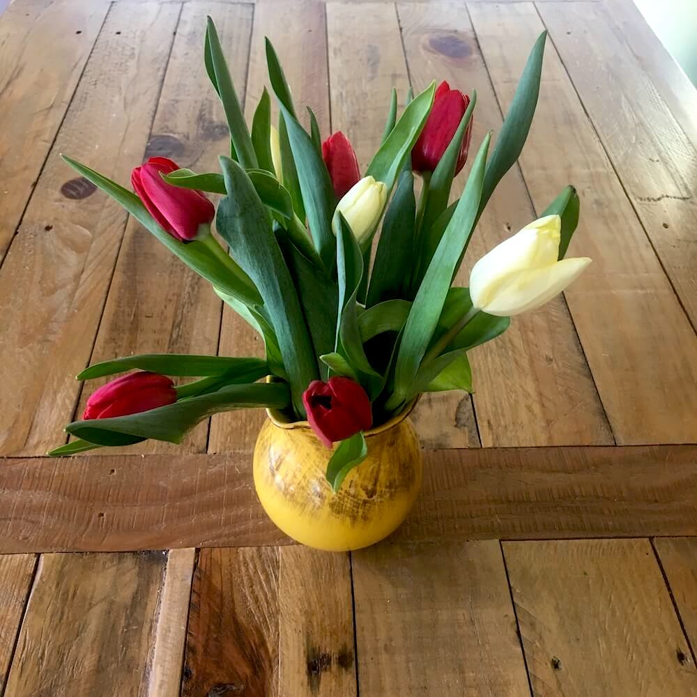 Vase of Tulips on Office Table・Karen Mittet Narrative Therapy & Grief Counseling