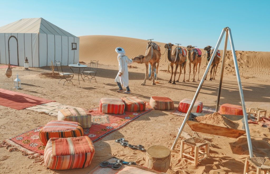 Moonlight Desert Camp and Camel.jpg